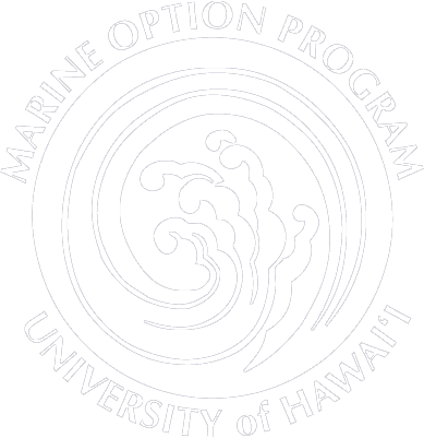 Marine Option Program Wave Logo